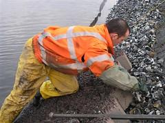 PC051843 (Richard Ippel) Tags: noordhollandskanaal ippel waterwerken noordhollands kanaalippel steenzetten
