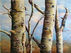 three friends (gossamerpromise) Tags: west art nature utah drawing aspen prismacolor coloredpencil impressedbeauty