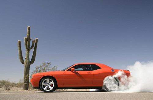 2008 Dodge Challenger SRT8 Pictures