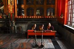 india tibet karnataka godslight byllakuppetibetprotestsettlementbylakuppe lifebyllakuppetibetprotestsettlement