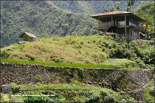The Village of Batad-14