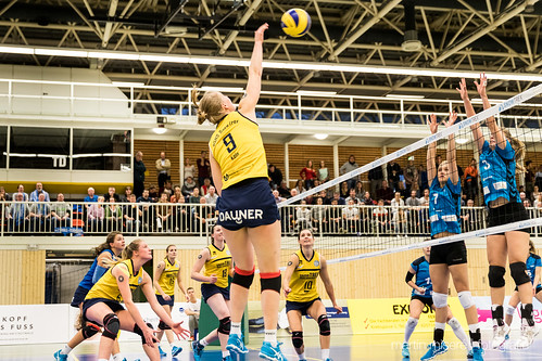 "3. Heimspiel vs. Volleyball-Team Hamburg • <a style=""font-size:0.8em;"" href=""http://www.flickr.com/photos/88608964@N07/32003258623/"" target=""_blank"">View on Flickr</a>"