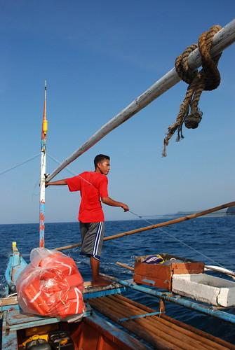 Whale Shark Seeker