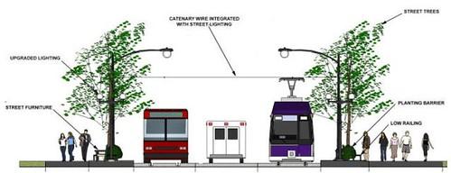 Purple Line 4