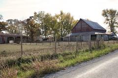 Childer's Pony Farm (Black.Doll) Tags: horses illinois ghostsign carmi whitecounty childersponyfarm