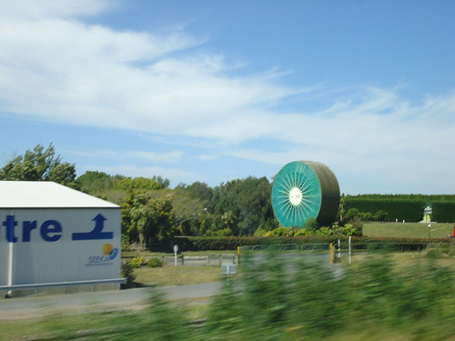 Kiwi en la carretera