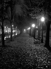 A Wet November Night in Princeton (BehindBlueEyes) Tags: november bw wet night newjersey nj princeton mercercounty princetonuniversity