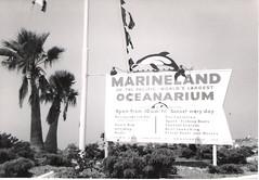Marineland of the Pacific (califboy101) Tags: ocean ca losangeles pacific dolphin whale marineland oceanarium