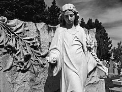 A Wild Rose (musicmuse_ca) Tags: blackandwhite bw 15fav cemetery grave rose statue nickcave frhwofavs santaclaramissioncemetery