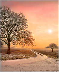 My way (Jean-Michel Priaux) Tags: pink winter sky orange france tree art nature rose illustration photoshop painting bravo quality duo hiver dream peinture dreaming ciel alsace romantic neige bec paysage arbre breathtaking anotherworld myway themoulinrouge ried slestat blueribbonwinner littlestories priaux specialtouch aplusphoto infinestyle treesubject diamondclassphotographer megashot allin1 francelandscapes gwain theunforgettablepictures fz18 betterthangood great123 mslandscape picswithsoul bindernheim natureselegantshot alemdagqualityonlyclub vanagram magicunicornverybest qualitygold magiayfotografia mygearandme
