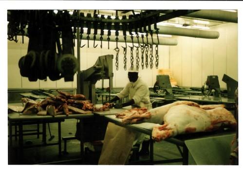 Studiebesök på ett slakteri i Bulawayo