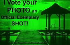 Exemplary Shot - LOGO copy