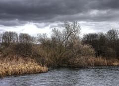 Wetlands: Here Comes the Rain (Tim Blessed) Tags: uk trees sky water clouds reeds wetlands marsh aplusphoto singlerawtonemapped