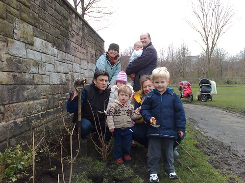 Volunteers Plant Hedge in Pilrig Park 4