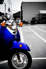 Vino In Blue