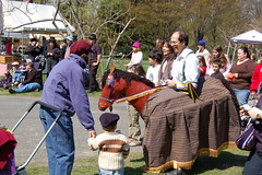 Man in horse