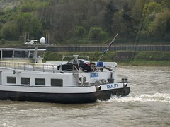 Rhine River Apr 08 062 (MurphMutt) Tags: castle germany rhineriver
