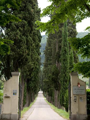 Villa Rospigliosi - Prato - Viale Alberato