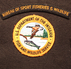 The world 39 s best photos of fish and marshal flickr hive mind for Us fish and wildlife service jobs