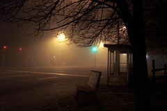 Misty Meadows (Tomitheos) Tags: street urban mist toronto canada halloween fog lights evening october flickr daily busstop opaque now today shiningstar globalwarming 2007 twilightzone bleary shadowy stockphotography densefog obscurity tenebrous 100views10faves poorlylit thecoolest instantfave goldenmix sullied abigfave  irresistablebeauty superbmasterpiece diamondclassphotographer viplanet griffinpoetryprize collectivedreamjournal wonderfulworldmix mistymeadows dazzlingshot ontariotomitheos ablazeaglow smazevaporfog steamdimdimming hazemurkmurkinessnebulagloom cloudyphotobongobongocloudiness blearyblearing gloomygraygrey lightlesslustermurkymuted paleovercastfoggy poemspoetrylyrics photographwithapoem songstopics