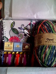 Sockpal package