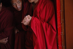 Monks eagerly awaiting the Lama's arrival, So very happy! Sakya Lam Dre, Tharlam Monastery of Tibetan Buddhism, Boudha, Kathmandu, Nepal (Wonderlane) Tags: travel nepal red religious path robe maroon buddhist traditional religion monk buddhism exhibit blessing doorway monastery monks lama tibetan kathmandu practice arrival tradition spiritual enlightenment awaiting result 2409 nationalgeographic initiation robes boudha buddhists eagerly empowerment tibetanbuddhist redrobes monksrobes tharlam lamdre tharlammonastery monkseagerlyawaitingthelamasarrival tharlammonasteryoftibetanbuddhism phuntsokphodrang soveryhappylamdre phuntsokpalace soveryhappysakyalamdre