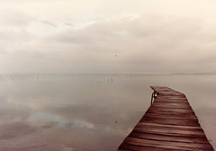 Lago Trasimeno (Leodex) Tags: themoulinrouge scoreme aplusphoto diamondclassphotographer amazingamateur colourartaward goldstaraward flickrestrellas flickrstas bestminimalshot veterinarifotografi goldenart photographia