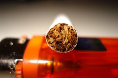 (jualez) Tags: macro tabaco cigarrillo