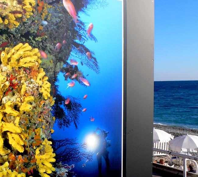 aquat-beach-cafe-50182