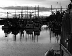 Outside Light (Brian Fillmore) Tags: bw boats dawn bc fillmore ih campbellriver nikond40 buoyants