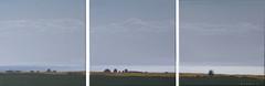 Küste (dirkgue) Tags: see meer wasser feld himmel wolken grau ufer landschaft dänemark danmark nordsee ostsee spiegelung acryl küste gegenlicht malerei norddeutschland leinwand gemälde realismus realistisch acrylmalerei dirkgünther