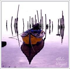 guas Roxas (andzer) Tags: yellow river boat fishing purple delta vessel lagoon andreas greece macedonia photowalk waters thessaloniki aguas roxo myfaves roxas salonica biotope axios  zervas  ysplix andzer   imagescollectors