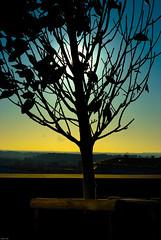 Sur le toit du grand Thêatre à Aix (guerriere) Tags: france colors landscape yahoo construction nikon bravo europe 2008 couleur architecure batiment merde lieux nikond200 nikon200 guerriere infinestyle nskottun