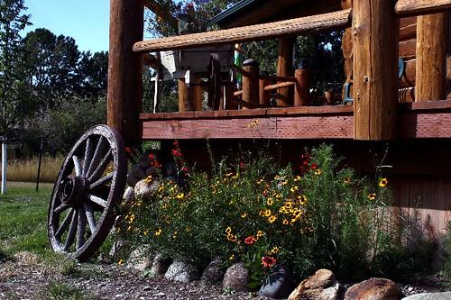 136a Wildflowers and wagon wheel