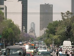 Mexico City Driving Rules