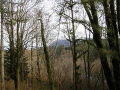 Hint of a view towards Si (bikejr) Tags: ironhorse johnwayne cedarbutte