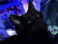 Aquamarine (jodice) Tags: explore blueribbonwinner abigfave ysplix flickrelitegroup theunforgettablepictures