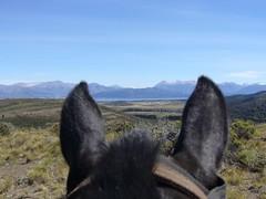 Bariloche - Cabalgata - cheval - vue
