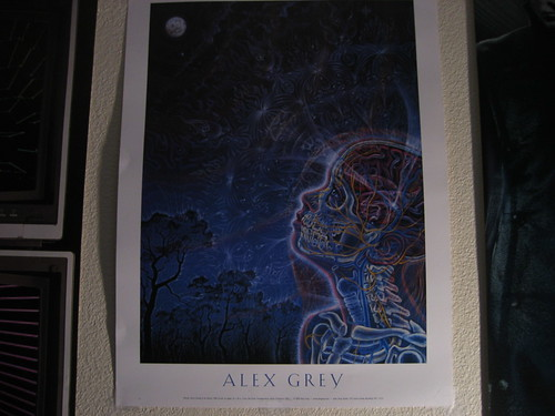 Alex Grey's Wonder poster