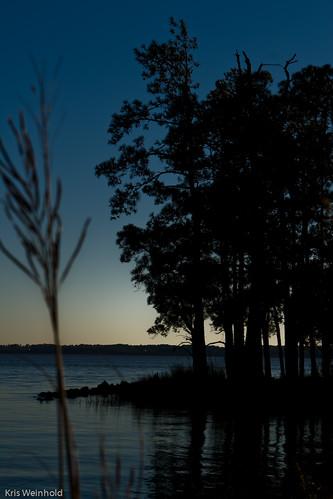 Jamestown Island Watershed