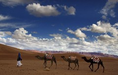 Morac (Karnevil) Tags: africa sky nature animals clouds desert morocco camels zagora