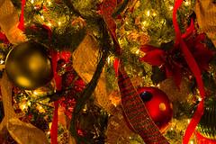 It's Beginning To Look A Lot Like Christmas (Kat Davis ©) Tags: christmas lights shiny memphis tennessee christmastree explore ornaments ribbon novideo peabodyhotel kathydavis madeexplore flickrgolfclub 7daysofshooting katdavis© katdavisphotography
