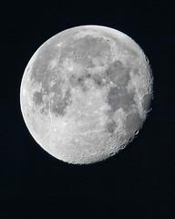 moon madison canonef300mmf4lisusm