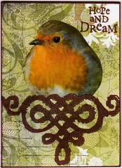 Hope and dream II