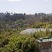San Diego Zoo 079