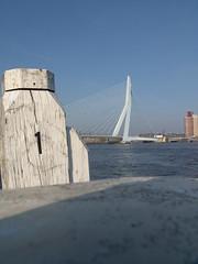 Rotterdam Erasmusbrug (Paul Valk) Tags: rotterdam erasmusbrug