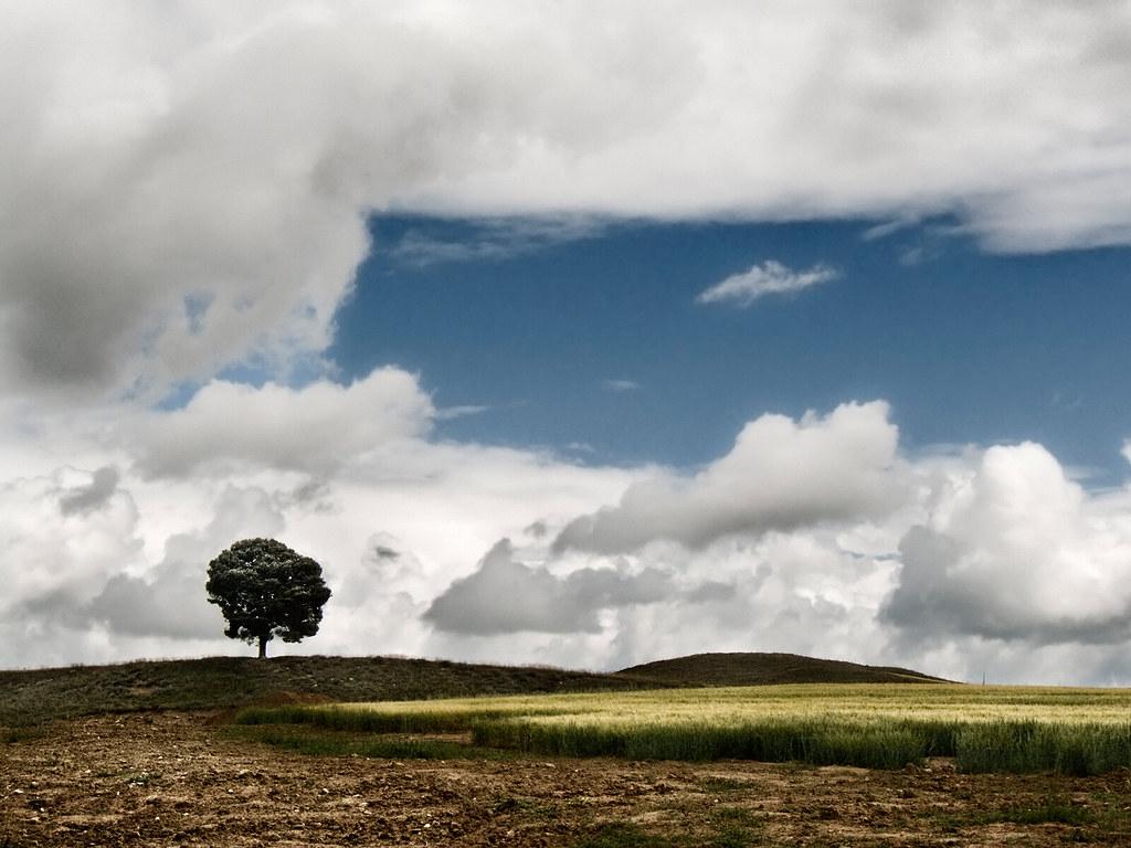 Photo de Navarre n°9 Paysage vers Artajona