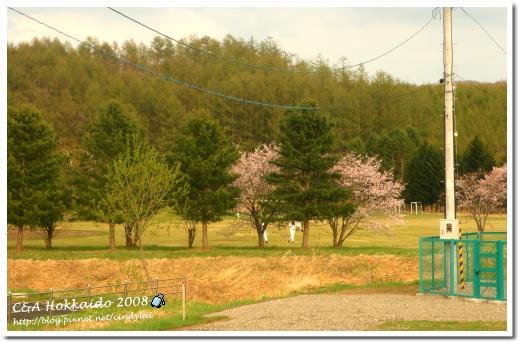 Hokkaido_0181