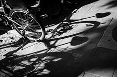 DSCF7037 (靴子) Tags: 黑白 bnw street 街拍 腳踏車 光影 結構 xt2 bike