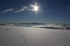 IMG_5185 (magicdeu1) Tags: döhlau bayern hof weinzlitz schnee sonne blume eis nebel windkrafträder windräder berge feld saale deutschland winter snow
